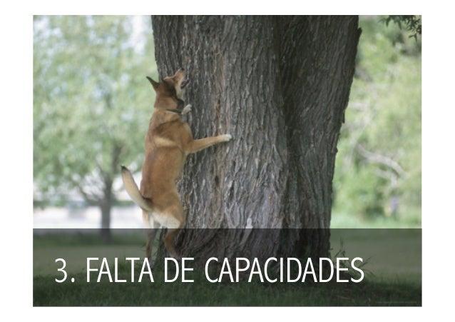3. FALTA DE CAPACIDADES