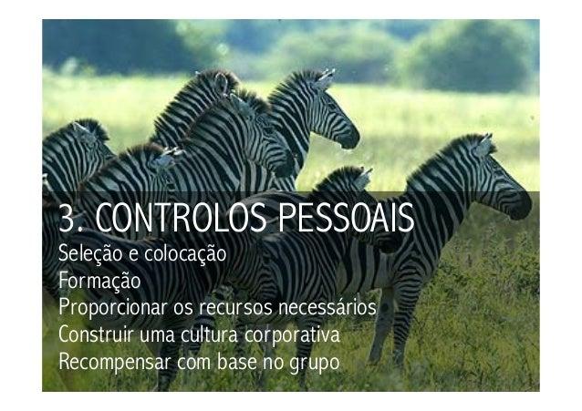 3. CONTROLOS PESSOAISSeleção e colocaçãoFormaçãoProporcionar os recursos necessáriosConstruir uma cultura corporativaRecom...