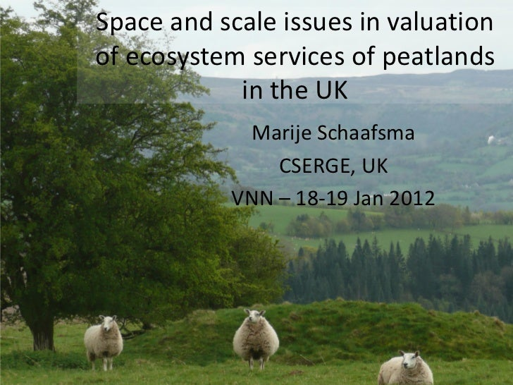 Space and scale issues in valuationof ecosystem services of peatlands            in the UK            Marije Schaafsma    ...