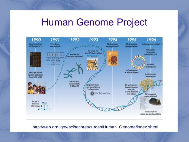 1000 Plant Genomes Project