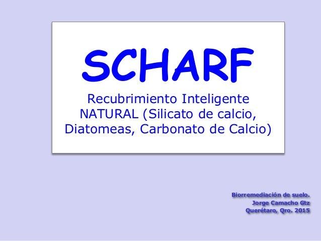 SCHARF Recubrimiento Inteligente NATURAL (Silicato de calcio, Diatomeas, Carbonato de Calcio) Biorremediación de suelo. Jo...