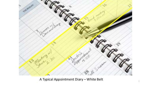 NewHabits-NewGoals 1 A Typical Appointment Diary – White Belt