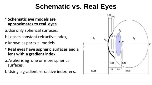 Schematic eye and cardinal points on cross section of the eye, flowchart of the eye, schematic eye retinoscopy, sagittal section of the eye, schematic section of the human eye, cutaway view of the eye, midsagittal section of the eye, transverse section of the eye, cross section diagram of eye,
