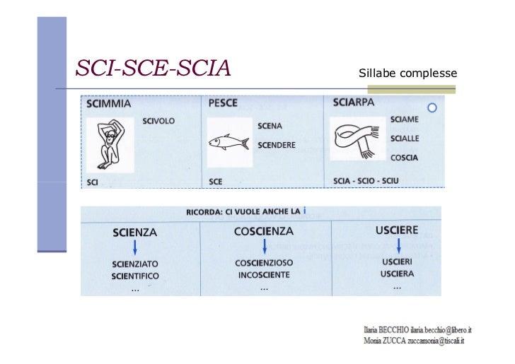 Sci Sce Schede Didattiche So Tutto 1 By Elvira Ussia Issuu Scheda