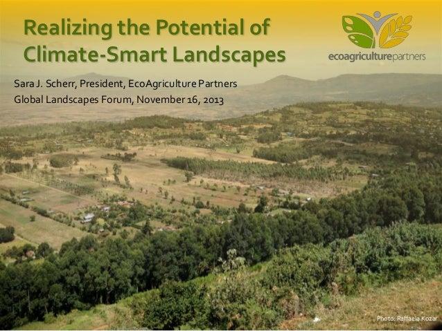 Realizing the Potential of Climate-Smart Landscapes Sara J. Scherr, President, EcoAgriculture Partners Global Landscapes F...