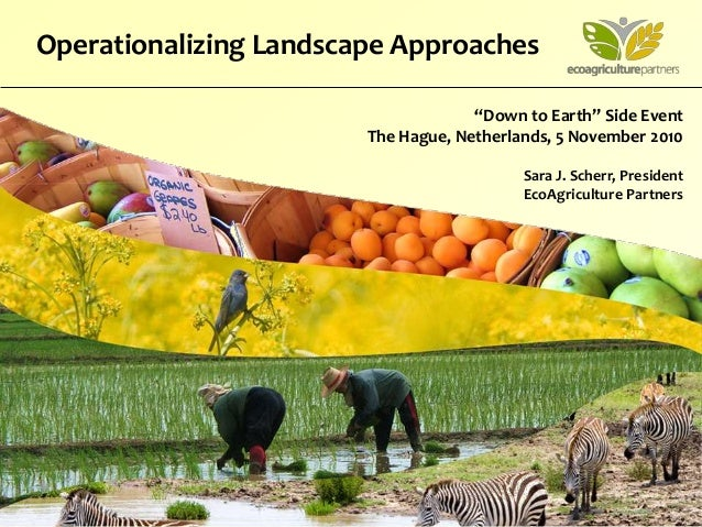 """""""Down to Earth"""" Side Event The Hague, Netherlands, 5 November 2010 Sara J. Scherr, President EcoAgriculture Partners Opera..."""