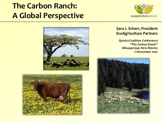 "Sara J. Scherr, President EcoAgriculture Partners Quivira Coalition Conference ""The Carbon Ranch"" Albuquerque, New Mexico ..."