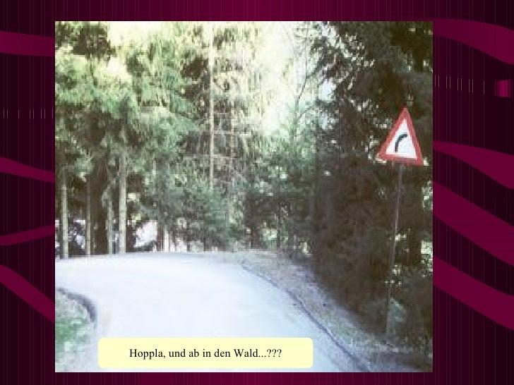 Hoppla, und ab in den Wald...???