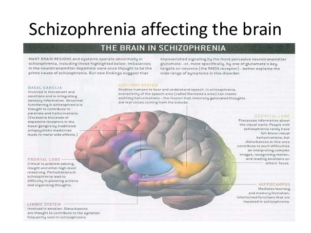 the importance of schizophrenia and its features Schizophrenia: causes, symptoms and treatments  importance of studying schizophrenia  it is important for schizophrenia to be identified in its early stages .