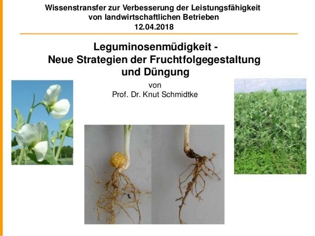 Leguminosenmüdigkeit - Neue Strategien der Fruchtfolgegestaltung und Düngung von Prof. Dr. Knut Schmidtke Wissenstransfer ...