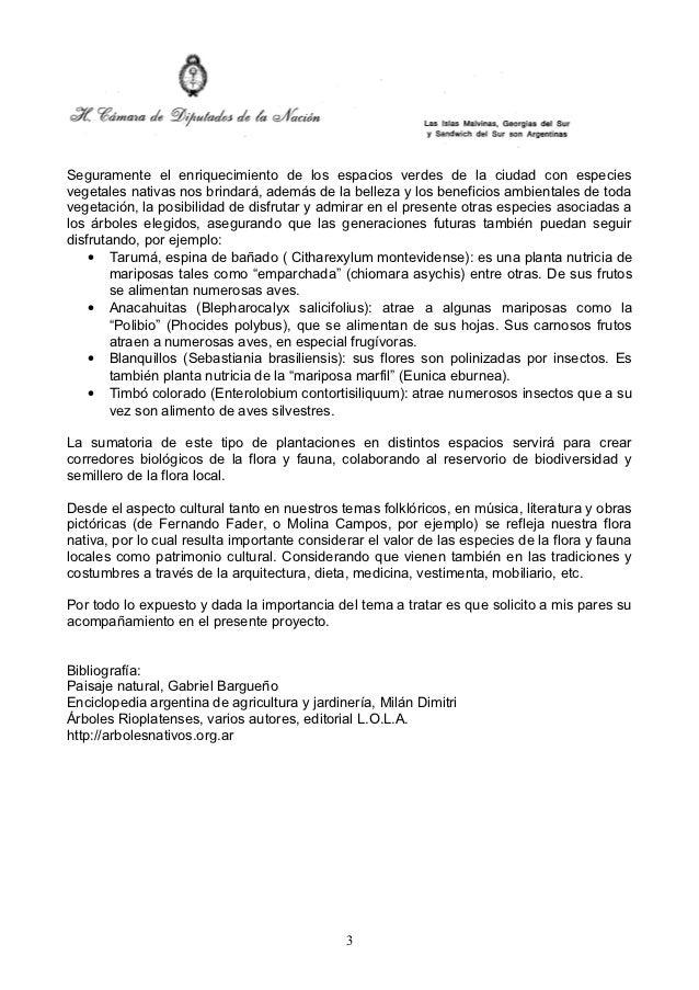Schmidt liermann   proyecto resolución - plantación de árboles autóctonos Slide 3