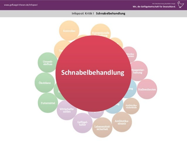 Infopool: Kritik l www.gefluegel-thesen.de/Infopool Wo Verantwortung Qualität erzeugt. Wir, die Geflügelwirtschaft für Deu...