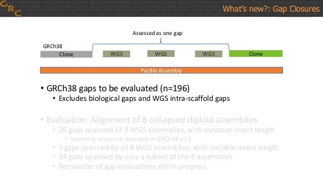 • GRCh38 gaps to be evaluated (n=196) • Excludes biological gaps and WGS intra-scaffold gaps • Evaluation: Alignment of 8 ...