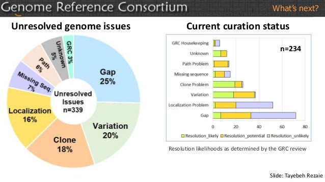 Unresolved genome issues Current curation status Resolution likelihoods as determined by the GRC review n=234 What's next?...