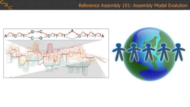 Reference Assembly 101: Assembly Model Evolution chromosome Patch release: No change to chromosome coordinates Assembly no...