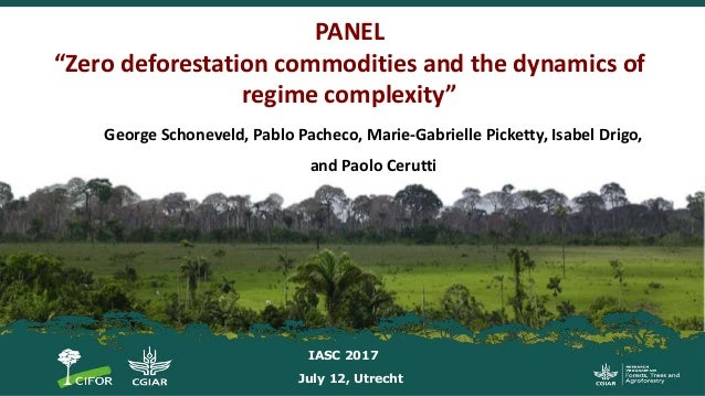 "PANEL ""Zero deforestation commodities and the dynamics of regime complexity"" George Schoneveld, Pablo Pacheco, Marie-Gabri..."