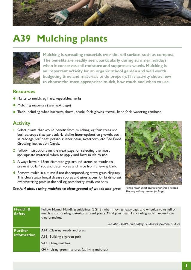 Mulching Plants ~ Teacher Guide, Organic Gardening ~ United