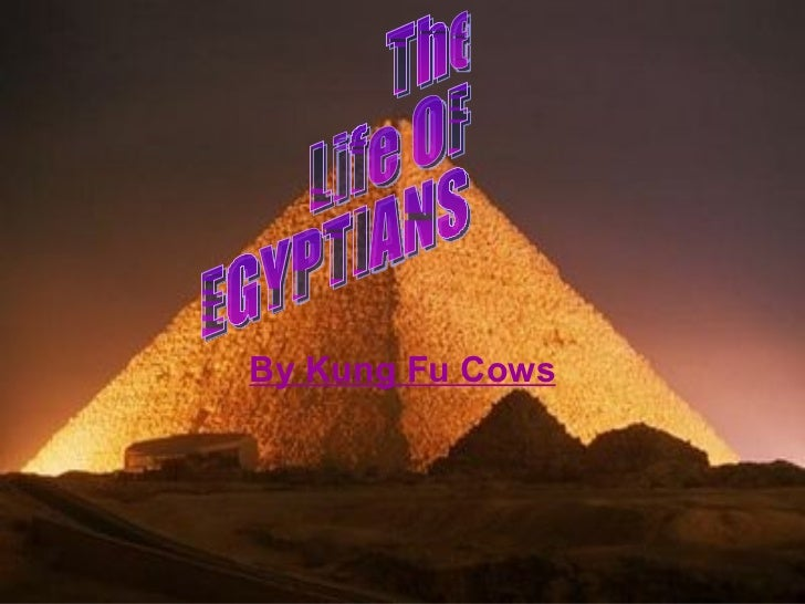 By Kung Fu Cows The Life OF EGYPTIANS