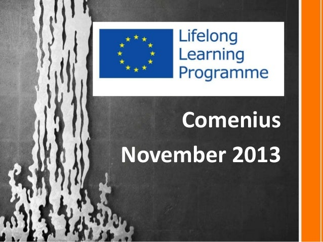 Comenius November 2013