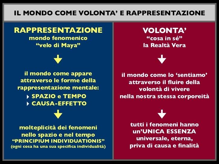IL MONDO COME VOLONTA' E RAPPRESENTAZIONE RAPPRESENTAZIONE                                      VOLONTA'        mondo feno...