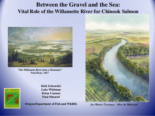 "Between the Gravel and the Sea:Vital Role of the Willamette River for Chinook Salmon""The Willamette River from a Mountain""..."