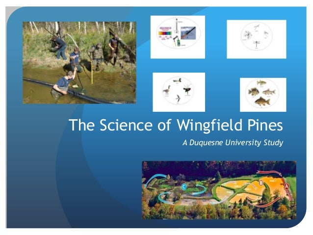 The Science of Wingfield Pines A Duquesne University Study