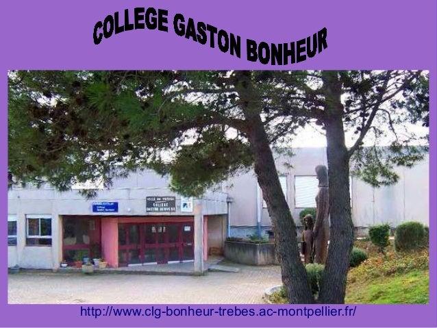 http://www.clg-bonheur-trebes.ac-montpellier.fr/