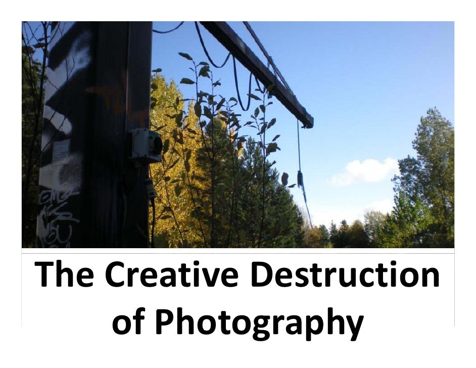 The Creative Destruction     of Photography