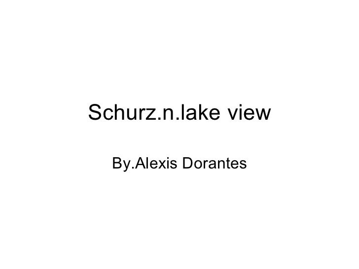 Schurz.n.lake view By.Alexis Dorantes