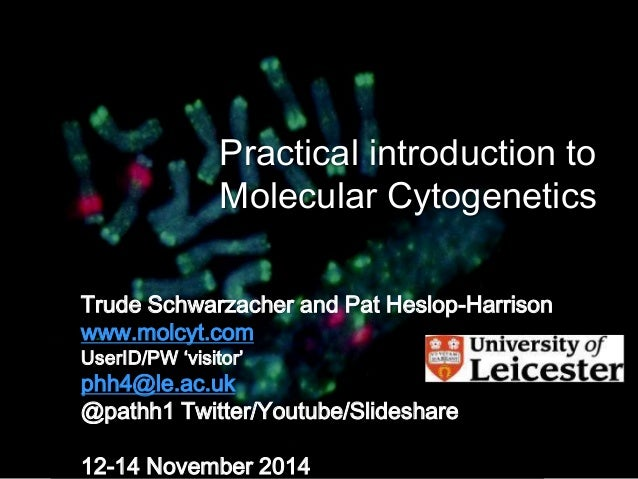 Practical introduction to  Molecular Cytogenetics  Trude Schwarzacher and Pat Heslop-Harrison  www.molcyt.com  UserID/PW '...
