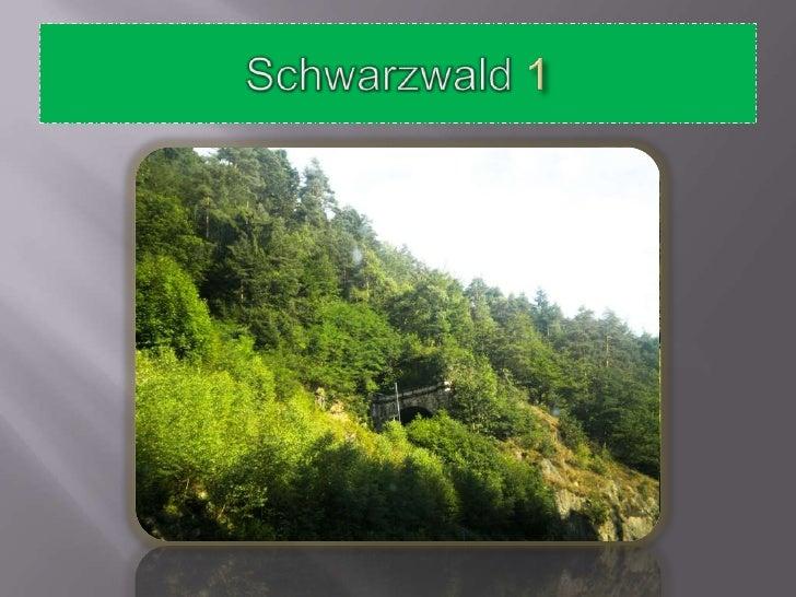 Schwarzwald 1<br />