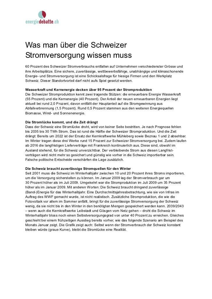 Was man über die SchweizerStromversorgung wissen muss60 Prozent des Schweizer Stromverbrauchs entfallen auf Unternehmen ve...