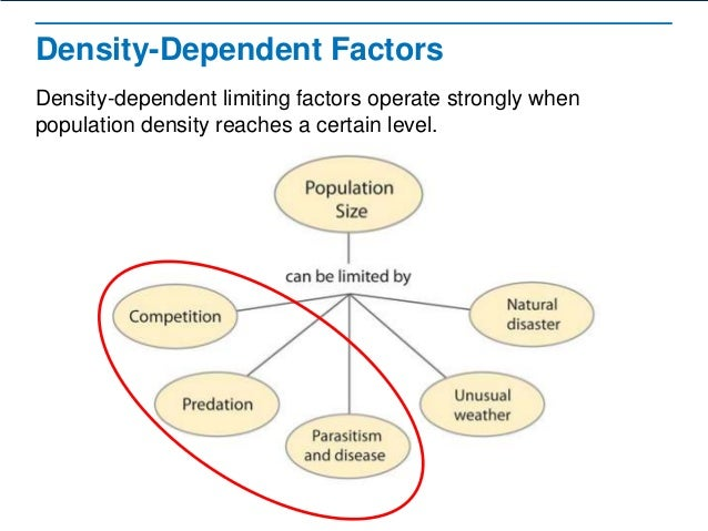 Examples Of Density Independent Factors Image Collections Example