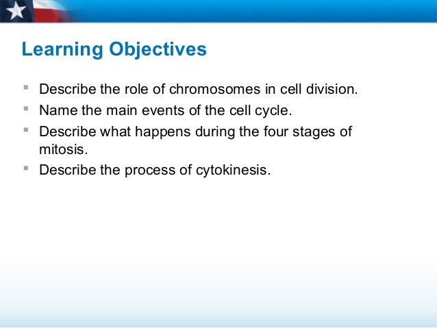 process of cell division 1 the process of cell division