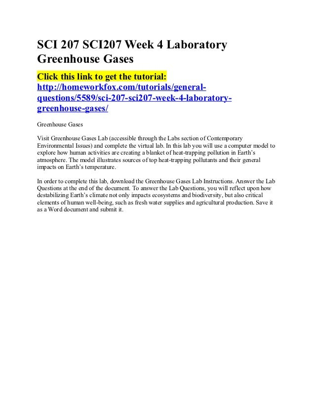 NETW 230 Week 4 Lab Report DeVry
