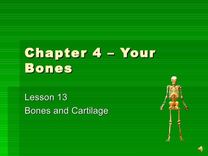 Chapter 4 – Your Bones Lesson 13 Bones and Cartilage