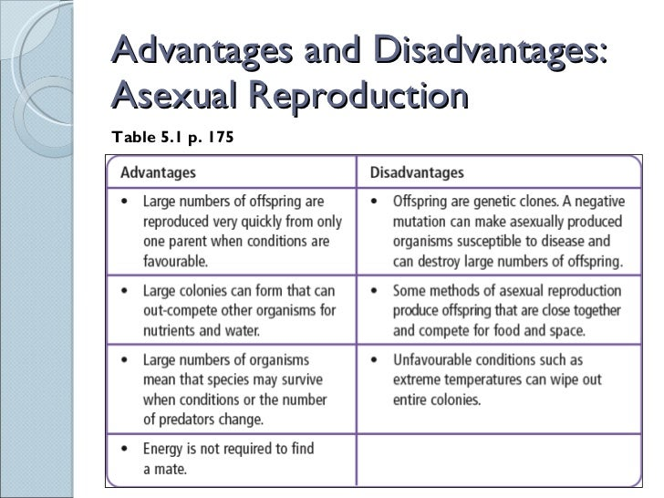 What are two disadvantages of asexual reproduction