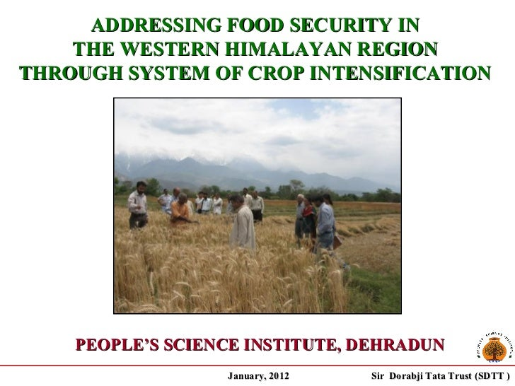 ADDRESSING FOOD SECURITY IN    THE WESTERN HIMALAYAN REGIONTHROUGH SYSTEM OF CROP INTENSIFICATION    PEOPLE'S SCIENCE INST...
