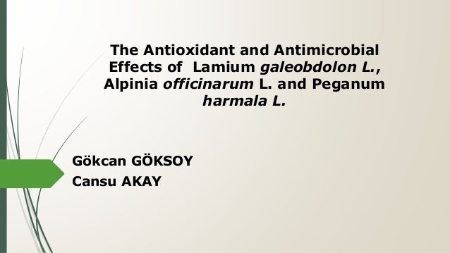 The Antioxidant and Antimicrobial Effects of Lamium galeobdolon L., Alpinia officinarum L. and Peganum harmala L. Gökcan G...