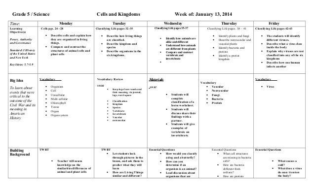 worksheet. Classification Of Organisms Worksheet. Grass Fedjp ...