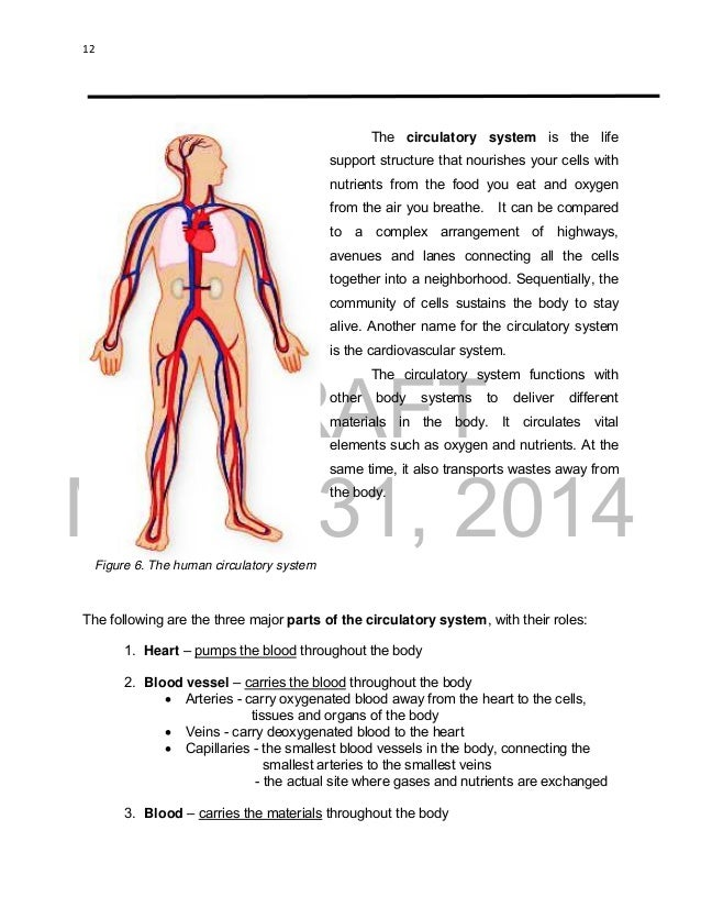 K to 12 grade 9 learners material in science 12 ccuart Images