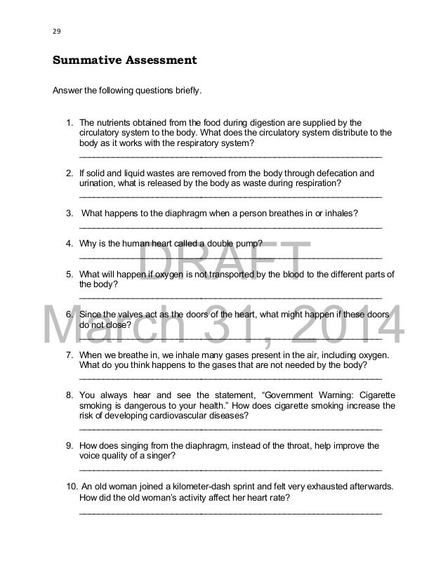 circulatory system questions and answers for grade 6