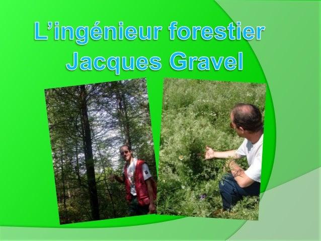 -À l'aide de la science forestière, il rédige & coordonne deux cahiers de normes pour les interventions en forêt, à chaque...