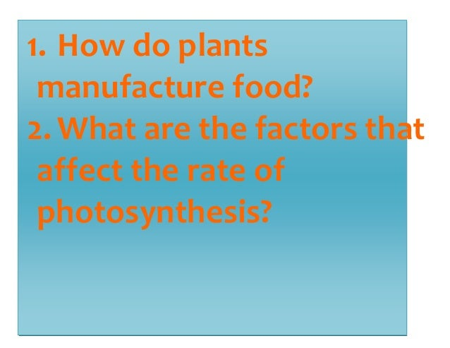1. How do plants  manufacture food?  2. What are the factors that  affect the rate of  photosynthesis?