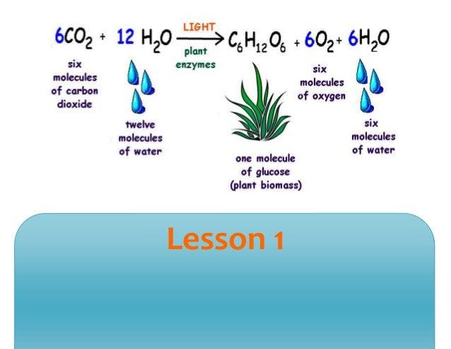 Science 2 Slide 3
