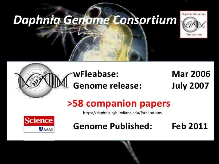 Daphnia Genome Consortium<br />wFleabase: Mar 2006<br />Genome release: July 2007<br />Genome Published:Feb 2011...