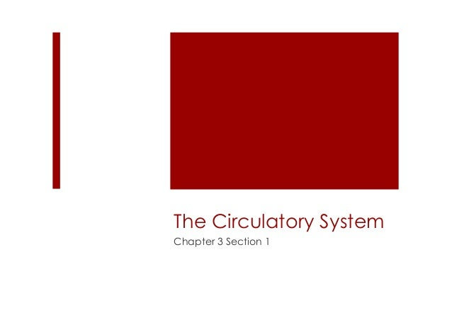 The Circulatory SystemChapter 3 Section 1