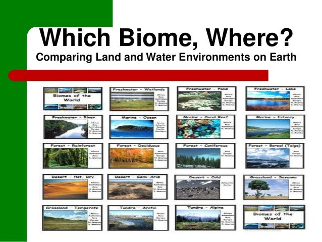 Which Biome, Where?Comparing Land and Water Environments on Earth