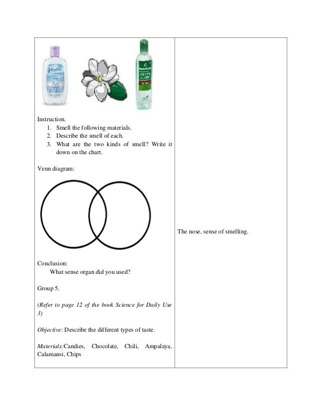 Detailed Lesson Plan In Science And Health Grade 3 on Science Of Smell Worksheet