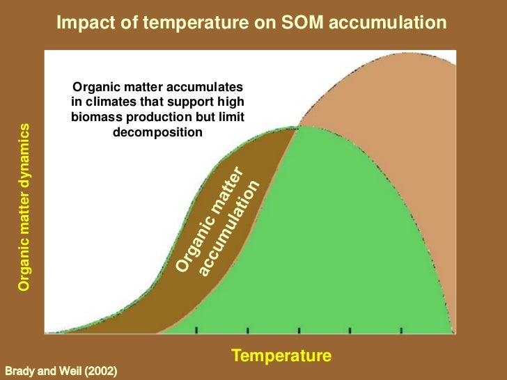 the impact of anaerobic soil conditions on plants biology essay School of plant biology, faculty of natural and agricultural sciences, the   aerobic rhizosphere around the root tip, which enhances  the species and  environmental conditions, aerenchyma  for plant growth in waterlogged soils  and flood-prone envi-  generally have little effect on gas diffusion, whereas  they do.